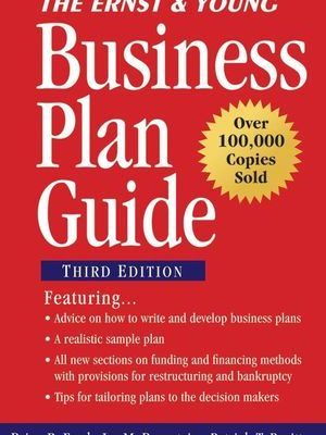 Ernst & Young Business Plan Gde 3rd